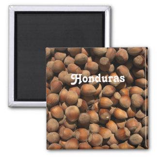 Hazelnuts Refrigerator Magnets
