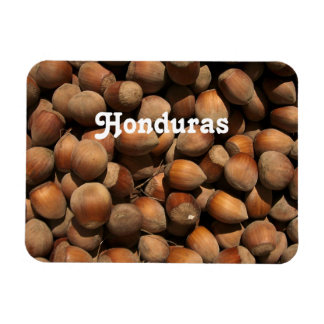Hazelnuts Flexible Magnet