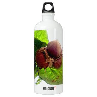 Hazelnuts Water Bottle