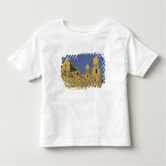 Hazreti Shakh-i-Zindeh Mausoleum Toddler T-shirt