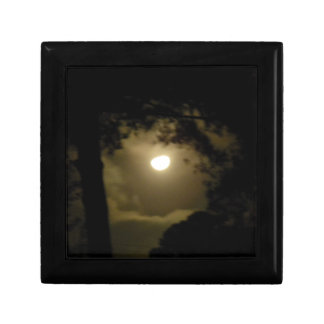 Hazy moon peers through the trees gift box