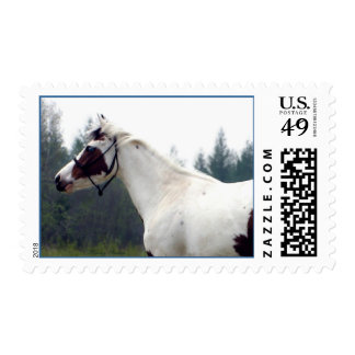 'Hazy Paint Day' Postage Stamps#1