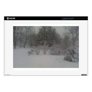 Hazy shade of winter skin for laptop