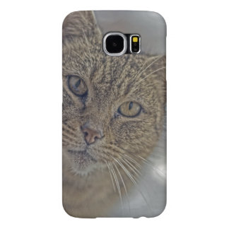 HDR Kitty Kitty Kitty Samsung Galaxy S6 Cases