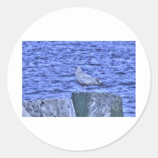 HDR Seagull on Rock Pylon Round Sticker