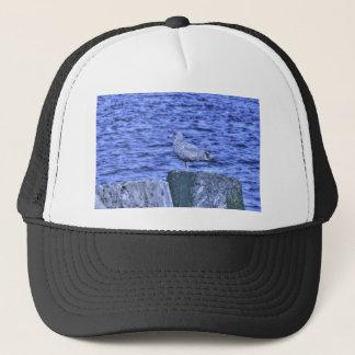HDR Seagull on Rock Pylon Trucker Hat
