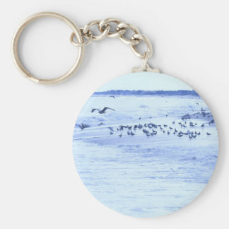 HDR Seagulls Checking Out Beach Coastline Basic Round Button Keychain