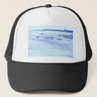 HDR Seagulls Checking Out Beach Coastline Trucker Hat