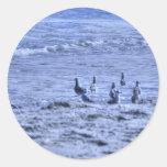 HDR Seagulls Together Beach Watching Ocean Round Sticker