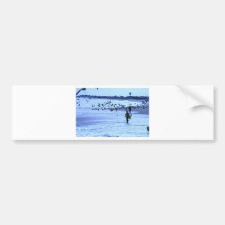 HDR Surfer Lady Feeding Seagulls Bumper Sticker