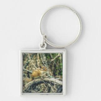 HDR Woodland Chipmunk Keychain