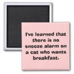 He aprendido que no hay alarma de la cabezada en… imán de frigorífico