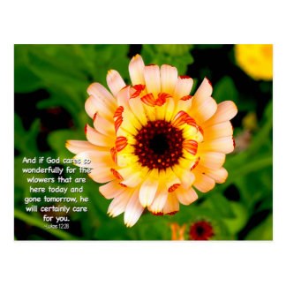 """""""He Cares For You"""" Flower Postcard"""