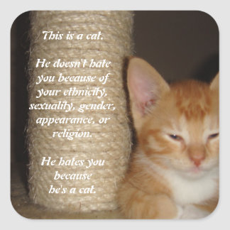 He Hates You Because He's a Cat Square Sticker