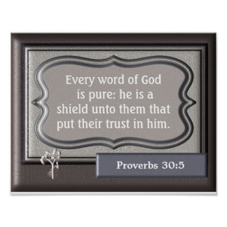 He is a Shield - Proverbs 30:5 - Art Print
