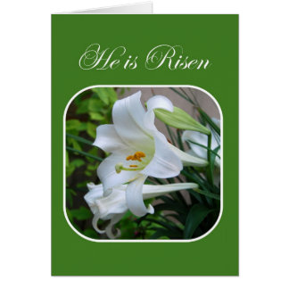 He is Risen, Easter Blessings, White Lily Greeting Card