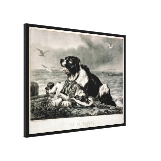 He Is Saved by and Rescue Dog Canvas Print