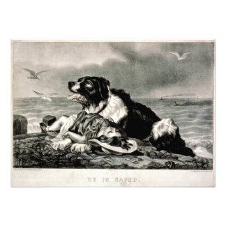 He Is Saved by Currier and Ives Rescue Dog Photo Print