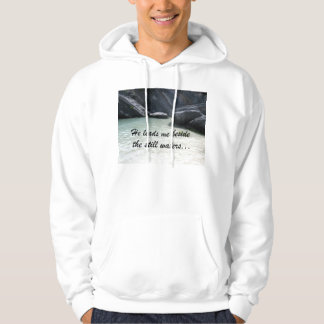 He leads me beside the still waters... hooded pullover