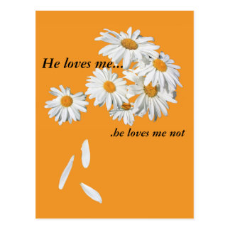 he loves me, he loves me not postcard