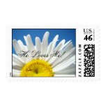 He Loves Me! postage stamps White Daisy