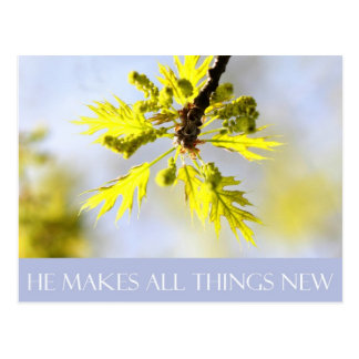 He Makes All Things New Post Card