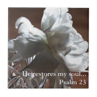 He Restores My Soul Psalm 23 Gift