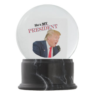 Image result for trump snow globe pics