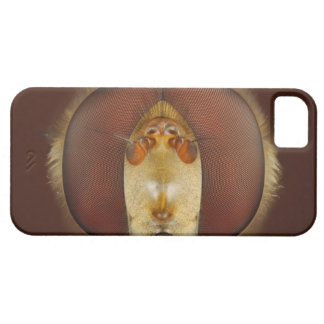 Head and Compound Eyes of a Hover Fly iPhone 5 Cover