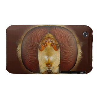 Head and Compound Eyes of a Hover Fly iPhone 3 Case-Mate Case