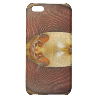 Head and Compound Eyes of a Hover Fly iPhone 5C Cover