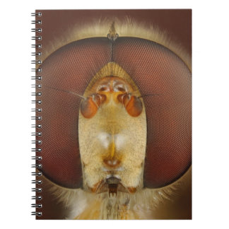 Head and Compound Eyes of a Hover Fly Spiral Notebook
