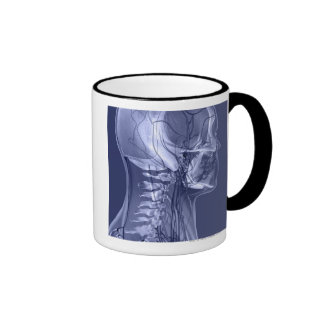 Head and Neck Blood Vessels Coffee Mugs