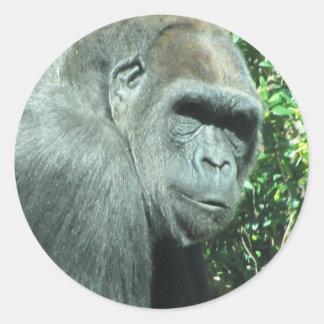 Head and Shoulder Gorilla Classic Round Sticker
