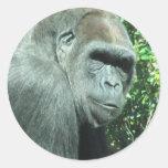 Head and Shoulder Gorilla Round Sticker
