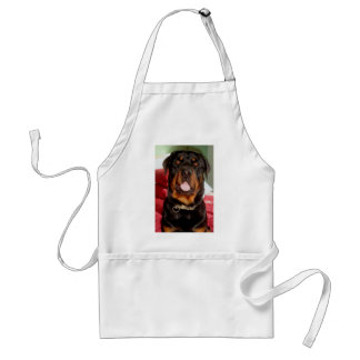 Head and Shoulders Adult Apron