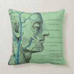 Head and veins - anatomy pillows