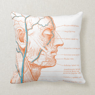 Head and veins - anatomy throw pillow