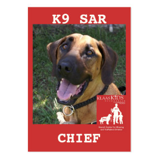 head-chief2, KlassKids Search Team Large Business Cards (Pack Of 100)