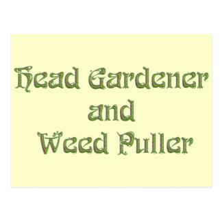Head Gardener and Weed Puller Postcards