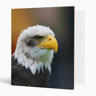 Head of a Bald Eagle Haliaeetus Leucocephalus Vinyl Binders