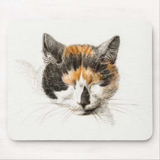 Head of a calico cat with closed eyes poster mouse pad