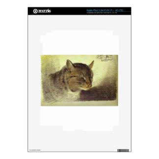 Head of a Cat by Alexander Orlowski Skins For iPad 3