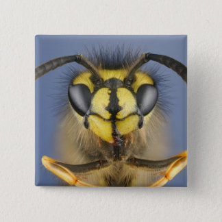 Head of a Common Wasp Button