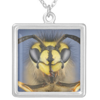 Head of a Common Wasp Jewelry