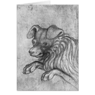 Head of a dog, from the The Vallardi Album Card