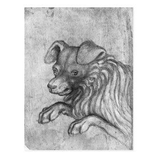 Head of a dog, from the The Vallardi Album Postcard