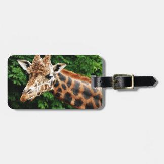 Head of a giraffe luggage tag