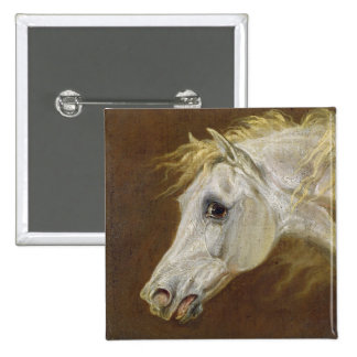 Head of a Grey Arabian Horse (oil on canvas on pan Button