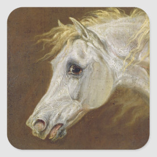 Head of a Grey Arabian Horse (oil on canvas on pan Square Sticker
